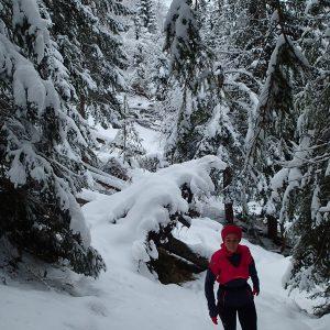 Alergare prin Chamonix, prin padure in ziua 2