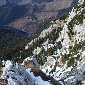 MPC de iarna in regie proprie, spre Valea Urzicii