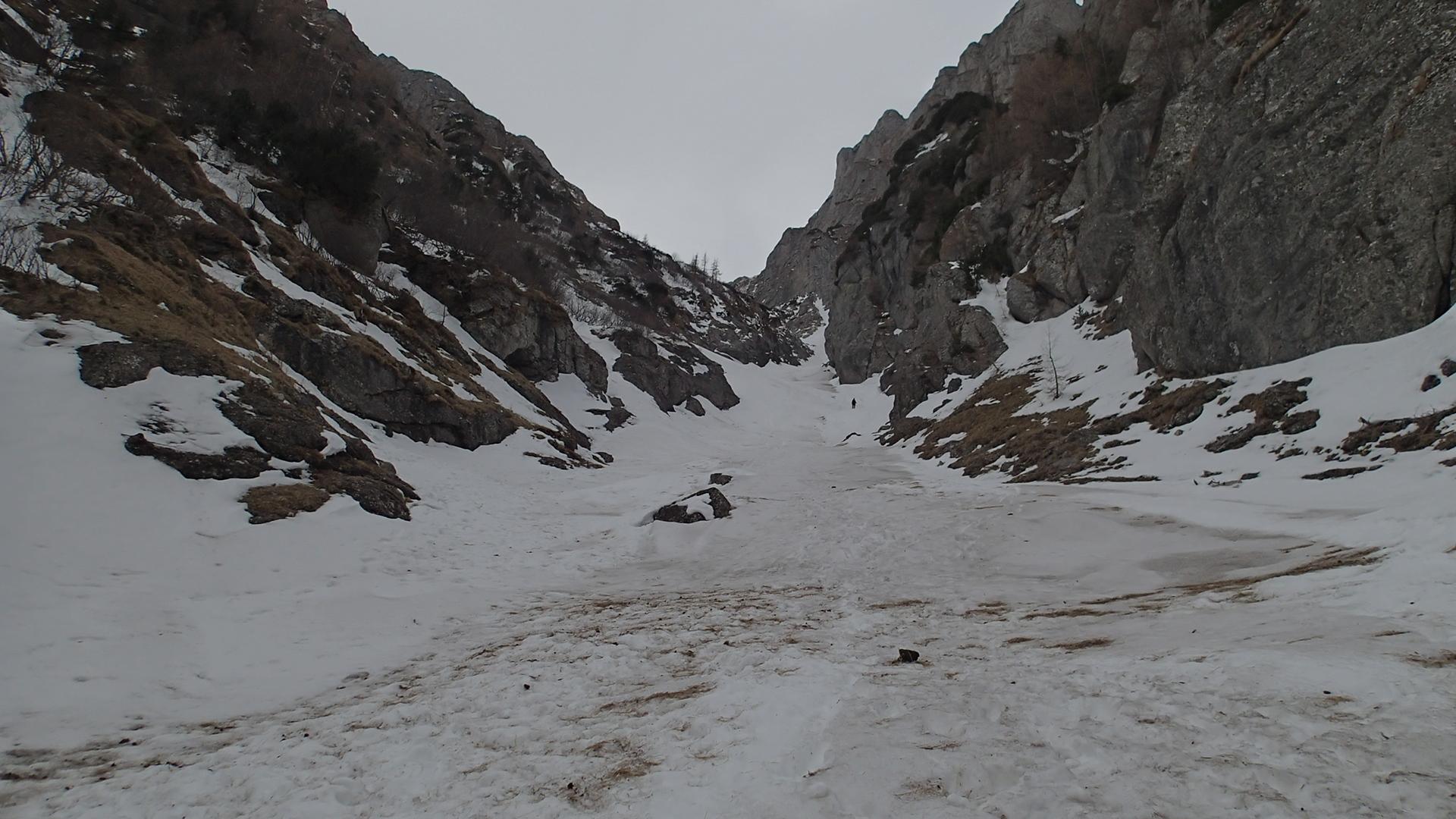 Valea Alba si Valea Cerbului, putin mai sus de la Verdeata