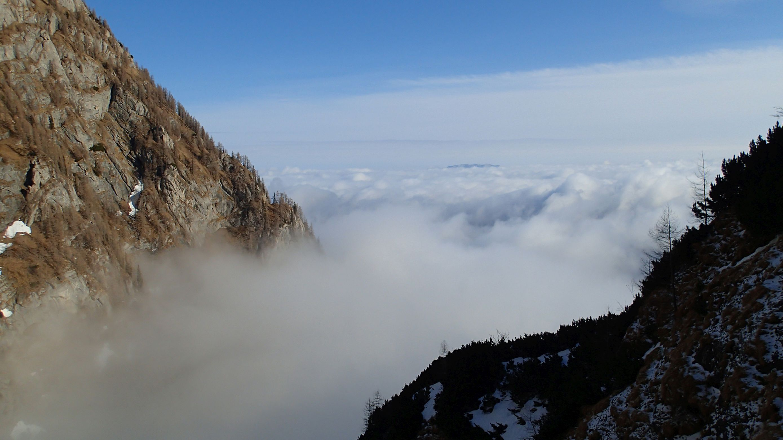 Albisoara Crucii si Branei, Busteniul in ceata