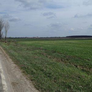 Pe la sud de Bucuresti cu cursiera, campii spre Prundu