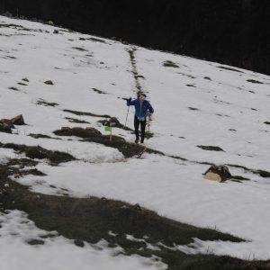 Vertical Race Zarnesti 2014, in poiana Zanoaga, la deal