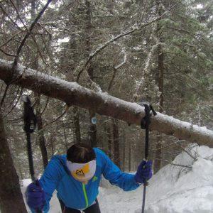 Vertical Race Zarnesti 2014, ultimele sute de metri spre varf