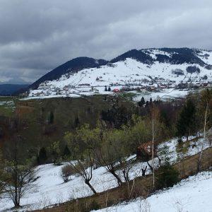 Zarnesti - Moeciu in alergare, vedere spre Magura