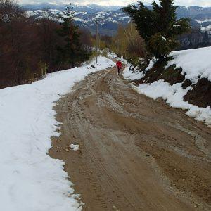 Zarnesti - Moeciu in alergare, la intrarea in Magura
