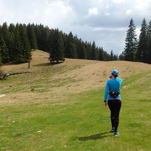 Weekend prin Zarnesti, Magura si Pestera - poiana