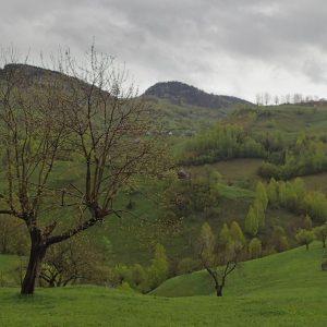 Weekend prin Zarnesti, Magura si Pestera - dealuri pe langa satul Pestera