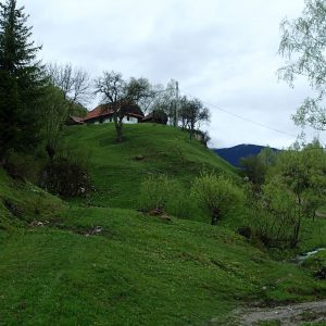 Weekend prin Zarnesti, Magura si Pestera - bifurcatia spre Pestera cu Lilieci