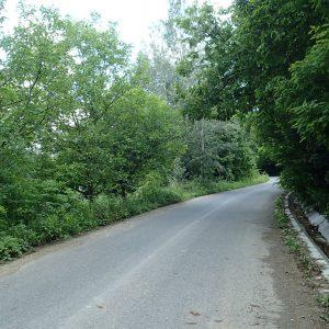 Panciu - Focsani - Vidra pe cursiera, prin padure spre satul Vizantea