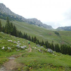 Ture de alergare prin Bucegiul vestic, spre Saua Strunga (fundal, dreapta)