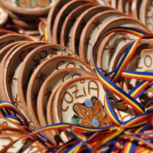 Cozia Mountain Run 2014 - medalii