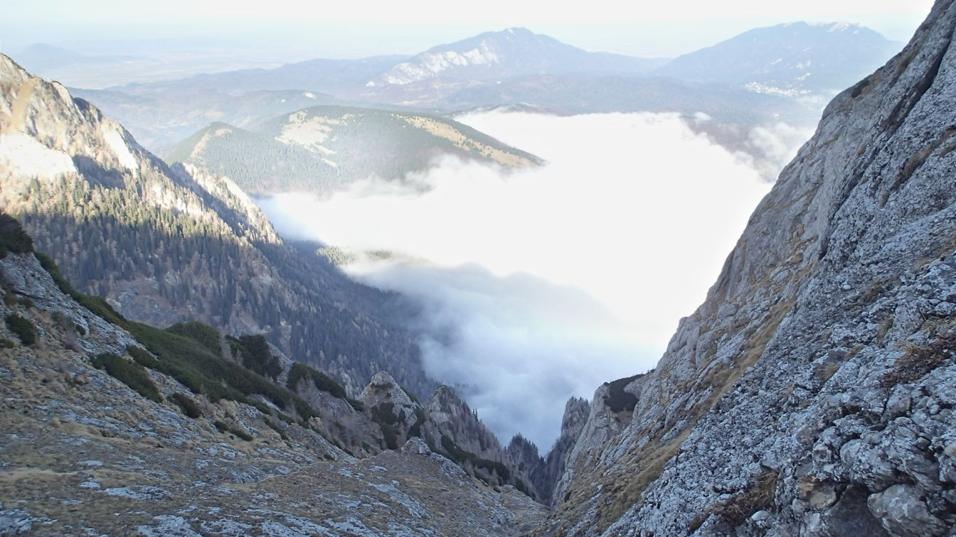 Valea Coltilor, partea superioara a vaii