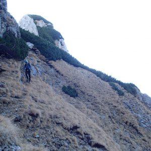 Valea Coltilor, coborarea spre Valea Galbinelelor