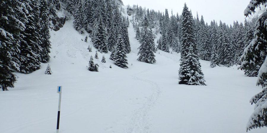 Alergare de iarna pe la Diham si Malaesti, cateva avalanse pe fundal