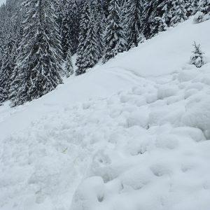 Alergare de iarna pe la Diham si Malaesti, a doua avalansa in poteca
