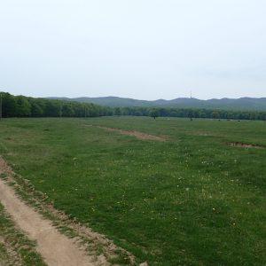Alergare prin muntii Vrancei, la urcare vedere spre deal (releul pe fundal)