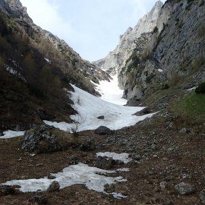 Albisoara Branei, Rasucita si alte fire secundare, Valea Alba de La Verdeata