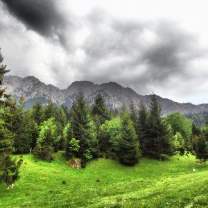 Canionul Cioranga, vedere spre Piatra Craiului, partea vestica