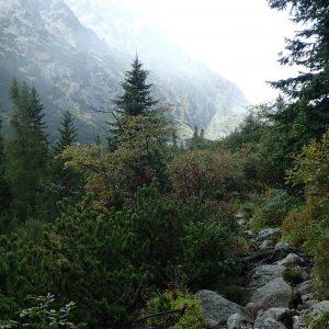 Alergare prin muntii Tatra, urcarea spre hotelul Sliezsky Dom