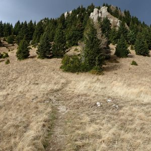 Alergare de toamnă prin Ciucaș, deja se innorase