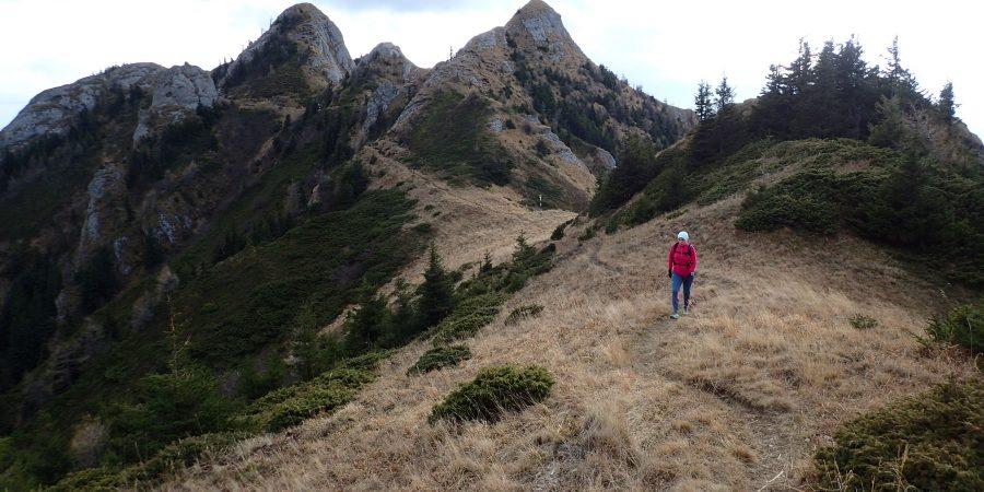 Alergare de toamnă prin Ciucaș, creasta Zaganu