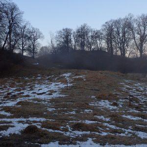 Alergare prin Câmpina, Bogdan, aburii diminetii in padure