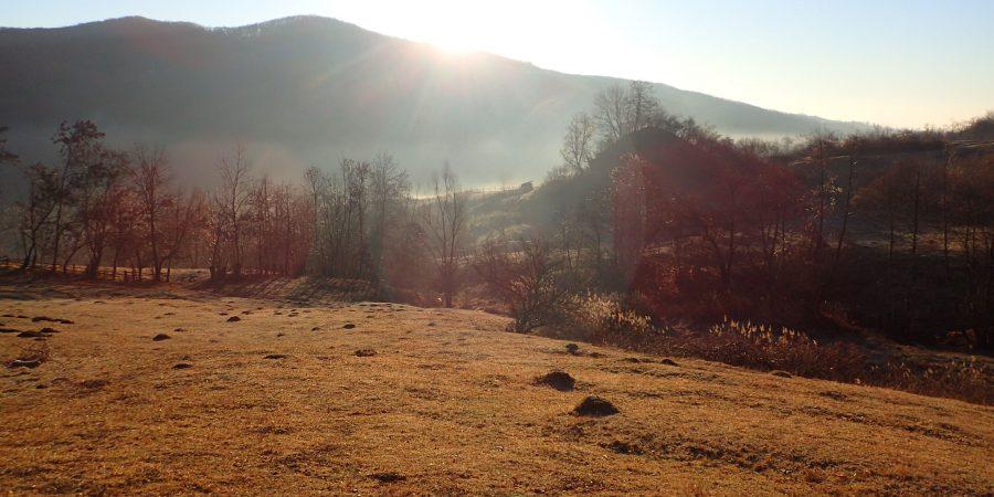 Alergare prin Câmpina, o zona de deal cu pasuni
