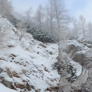Valea Colţilor de iarnă, un rar moment de cer semi-senin