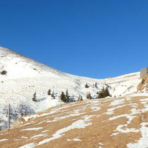 Alergare de iarnă Sinaia - Babele, zona fara zapada aproape de Cota 2000
