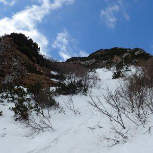 Trekking pe Creasta Bucşoiului, zona de jungla care pe zapada arata mai uman
