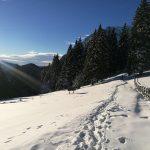 Prima alergare montană de iarnă din 2018