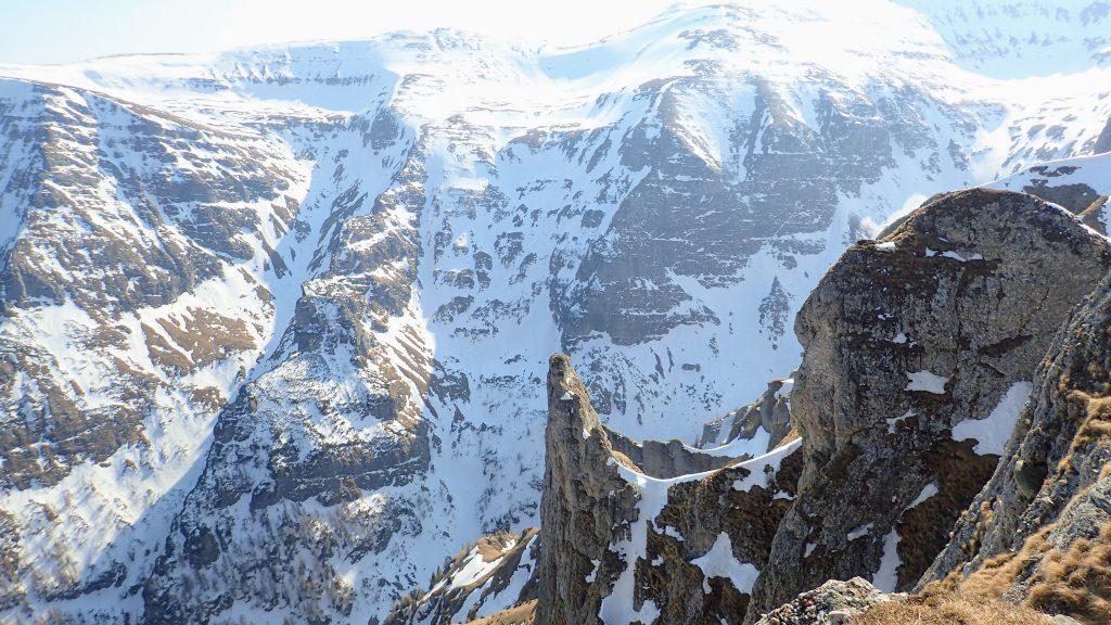 Vedere spre versantul din stanga, cum se urca, a Vaii Cerbului