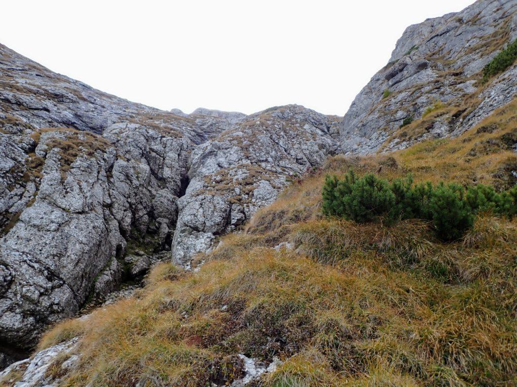 Locul de unde se desparte valea in doua