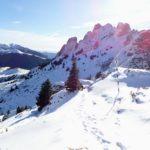 Alergare de iarnă în Ciucaș