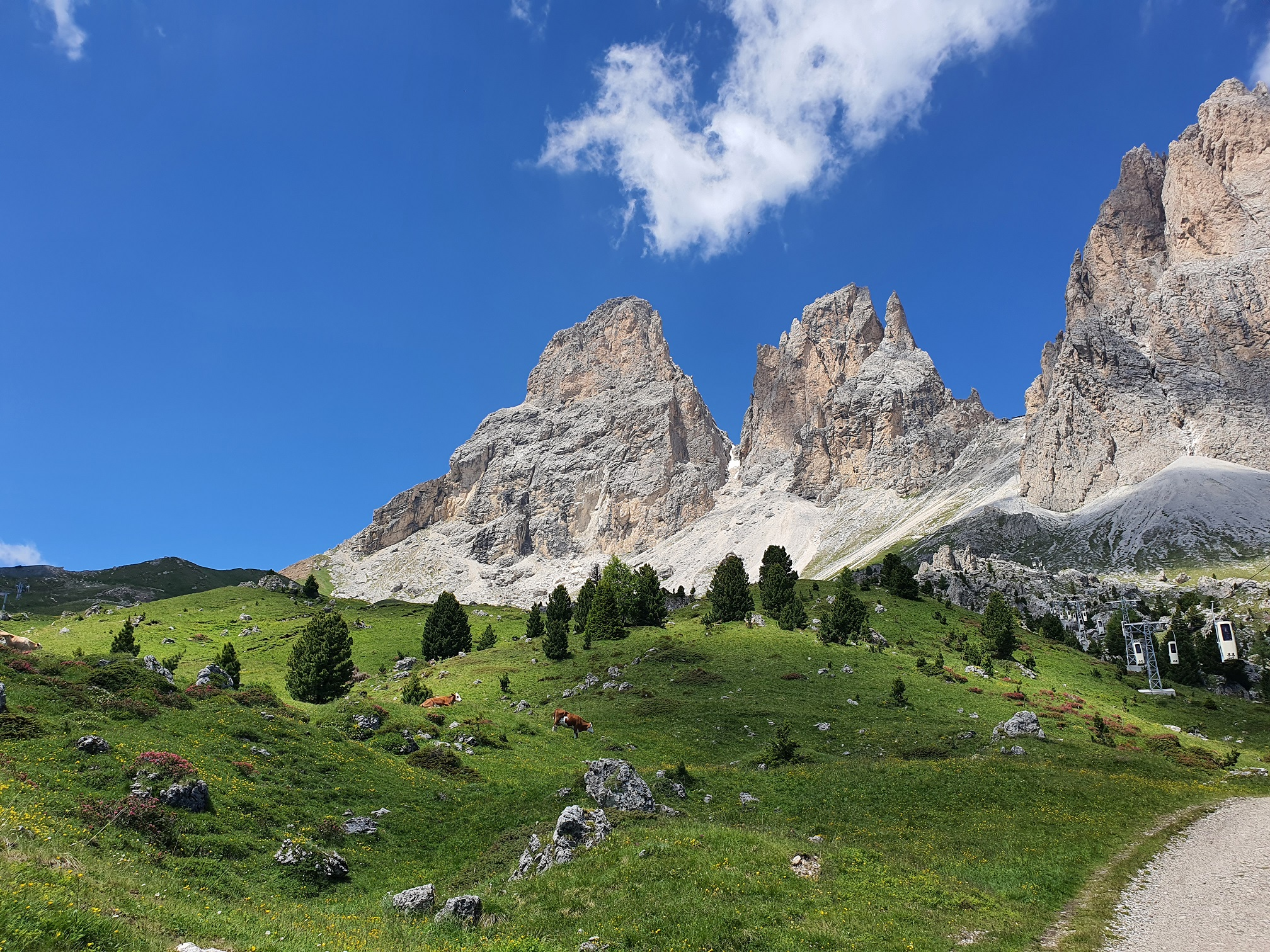 Zona de escalada in dreapta jos