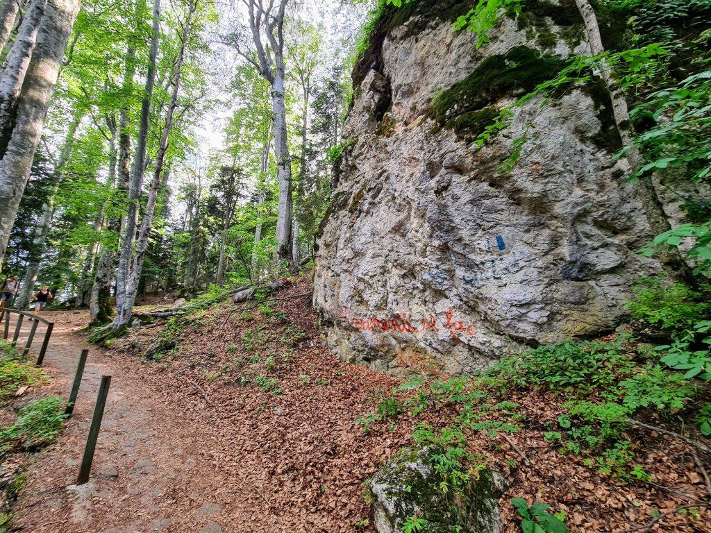 Bolovanul ce precede bifurcatia spre faleza Inox (Belvedere)