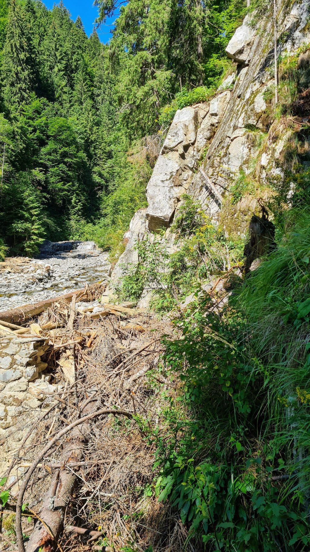 Aluviuni la baza sectorului Pârâu